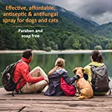 Veterinary Formula Clinical Care Antiseptic and