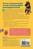 Puppy Training in 7 Easy Steps: Everything You Need