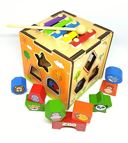 Victor Toys Toddler developmental toys activity cube with xylophone Sorting box with Animal Shaped Wooden Blocks for Preschool Toddlers Boys & Girls. Educational Toys for Toddler Learning (Activity Developmental Toy)