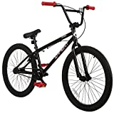 Sapient Titan BMX Bike