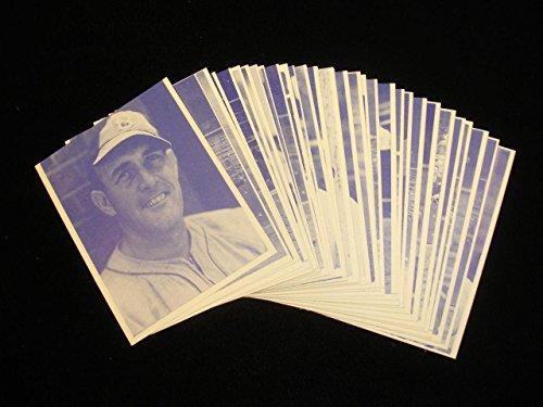 Set of 32 1973 TCMA 1941 Brooklyn Dodgers Baseball Cards - Autographed MLB Photos (Dodgers Brooklyn Autographed Baseball)