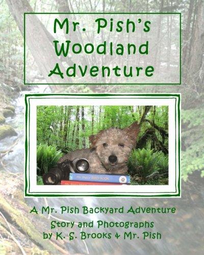 Read Online Mr. Pish's Woodland Adventure (Mr. Pish Backyard Adventure) (Volume 1) pdf