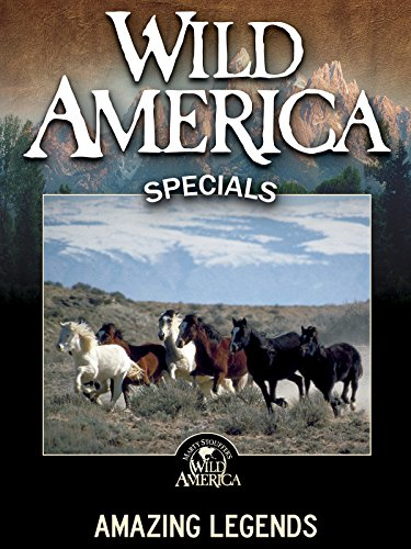 (Wild America: Amazing Legends)