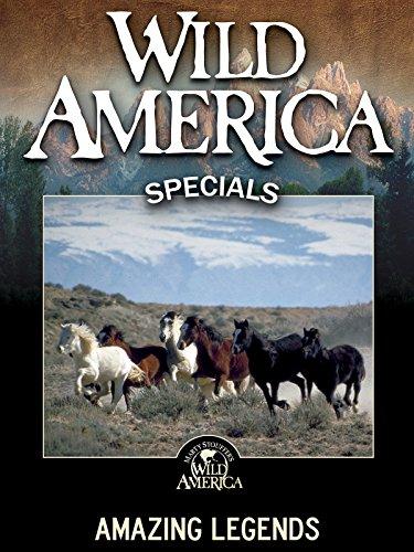 Wild America: Amazing Legends -
