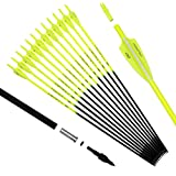 Pointdo 30inch Carbon Arrow Fluorescence Color Targeting and Practice and Hunting Arrows for Compound Bow and Recurve Bow with Removable Tips
