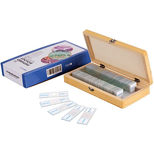 (AmScope PS50 Prepared Microscope Slide Set for Basic Biological Science Education, 50 Slides, Includes Fitted Wooden Case )