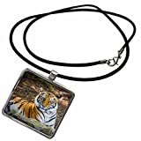 3dRose Danita Delimont - Brian Jannsen - Big Cats - Bengal Tiger at the Nashville Zoo, Nashville, Tennessee, USA - Necklace With Rectangle Pendant (ncl_189543_1) offers