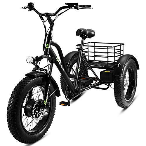 (Goplus Electric Trike 20
