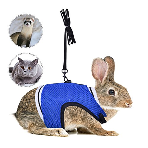 Iguana Dog Costume (PerSuper-Soft Mesh Small Pet Harness Leash with Safe Bell, No Pull Comfort Padded Vest Durable Nylon Harness Adjustable All Season for bearded dragon,Guinea Pig,Ferrets,Rabbits,Cats (XL, Blue))