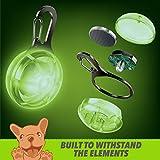 Ruff 'n Ruffus Retractable Dog Leash + Free Waste