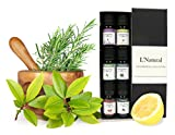 Aromatherapy - Essential Oils 6 Oils in Gift Box -100% Pure -Sale- Set Includes Lavender Peppermint Lemongrass Sweet Orange Eucalyptus Tea Tree Oil