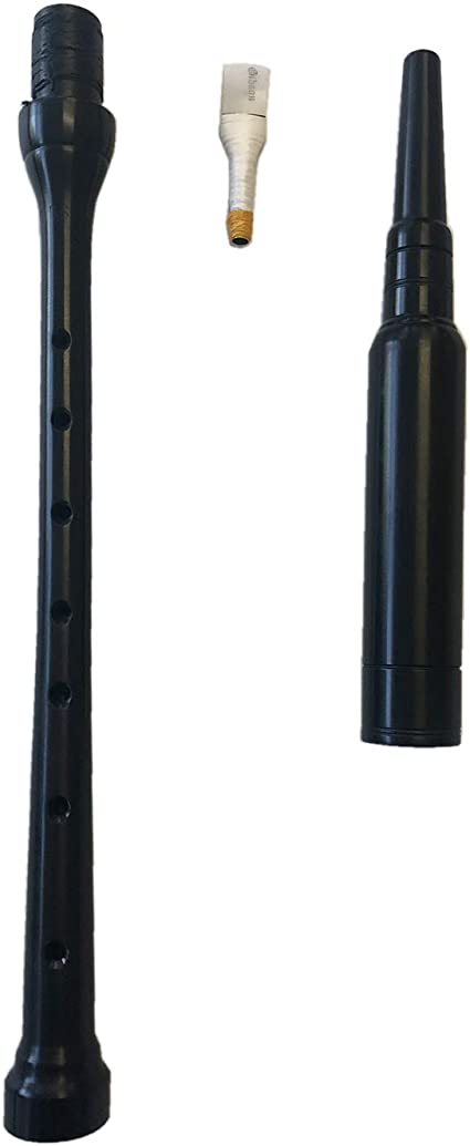 RG Hardie Bagpipe Chanter Reed Protector highland bagpipes