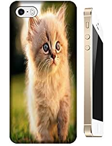 Cat Cute Color Orange Lovely Back cases protective for Apple Accessories iPhone 5/5S