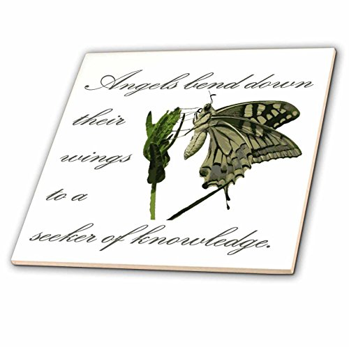 3dRose Taiche - Greeting Card - Angels - Angels Bend Down Their Wings To A Seeker Of Knowledge - 6 Inch Glass Tile (ct_275665_6) (Seekers Glass)