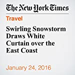 Swirling Snowstorm Draws White Curtain over the East Coast | James Barron,Rick Rojas