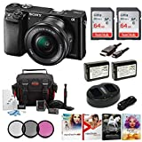 Best Mirrorless Cameras - Sony Alpha a6000 Mirrorless Camera w/ 16-50mm Lens Review
