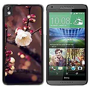 Unique Designed Cover Case For HTC Desire 816 With Apricot Flower Bud Pring Nature Twig Tree Wallpaper Phone Case