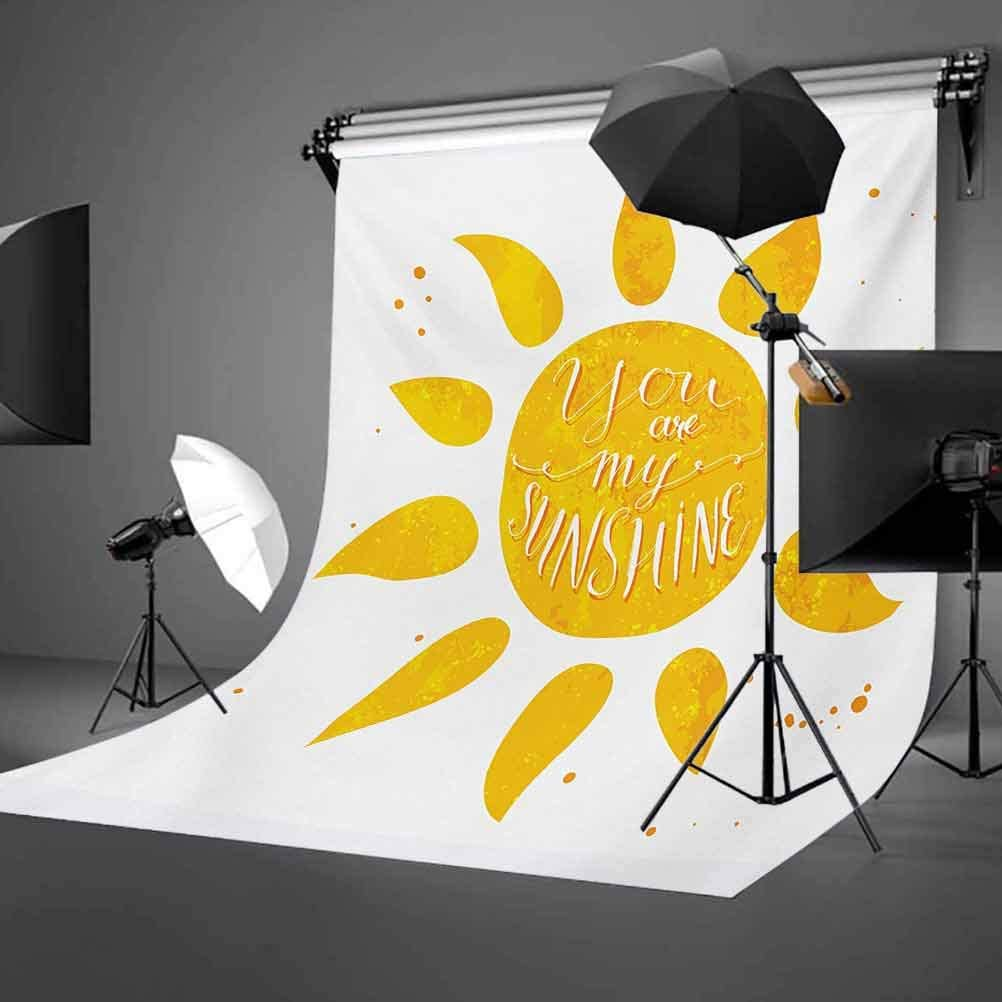 Sunshine Stylized Lettering with Grungy Effects Featured Better Half Abstract Artistic Background for Baby Birthday Party Wedding Vinyl Studio Props Photography Quote 10x15 FT Photography Backdrop