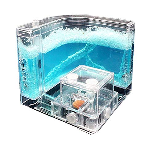NAVADEAL Ant Farm Castle, Habitat Educational & Learning Science Kit Toy for Kids & Adults - Allows Study of The Behavior of Ants and Social Structure, Ecosystem Within The 3D Maze of Translucent Gel