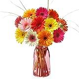 Florists - Colorful Gerbera Daisies Bouquet - Fresh Flowers