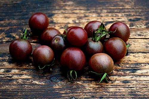 (Tomato Cherry Black Seeds Early Vegetable for Planting Organic Non GMO 25 Seeds)