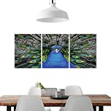 "magnificent peacock wall mural Frameless Paintings 3 Pieces Painting W16"" x H24""/3P, to liven up and energize any wall or room. Peafowl Feathers Decor Collection Magnificent Peacock Picture Vibrant Colorful Feathers Photo Pattern"