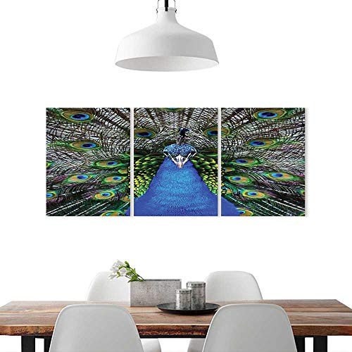 "Frameless Paintings 3 Pieces Painting W16"" x H24""/3P, to liven up and energize any wall or room. Peafowl Feathers Decor Collection Magnificent Peacock Picture Vibrant Colorful Feathers Photo Pattern"