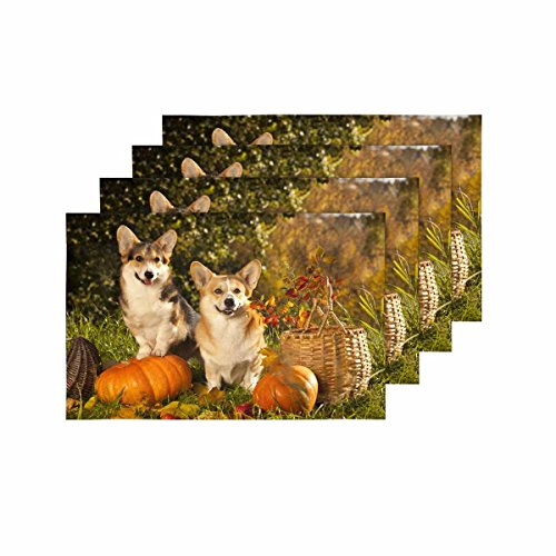 InterestPrint Welsh Corgi Pembroke Dog Pumpkin Basket Happy Halloween Placemat Table Mats Set of 4, Place Mat for Kitchen Dining Table Restaurant Home Decor 12