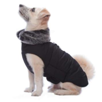 Dog Gone Smart Abrigo para Perro Inteligente de Color Negro 30,48 cm: Amazon.es: Productos para mascotas