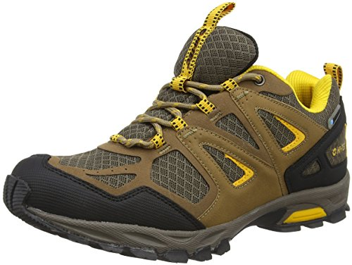 Hi-Tec Men Fugitive Waterproof Multisport Outdoor Shoes, Brown (Smokey Brown 042), 9 UK 43 EU