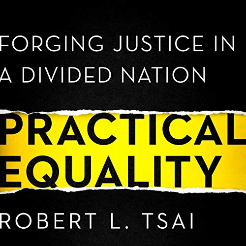 Pdf Law Practical Equality: Forging Justice in a Divided Nation