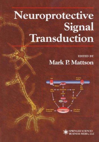 Neuroprotective Signal Transduction (Contemporary Neuroscience)