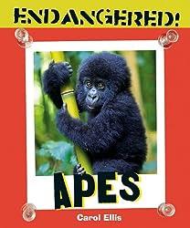 Apes (Endangered!)