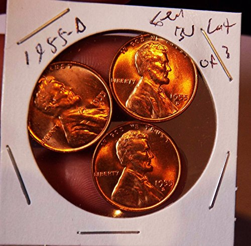 (Wheat Cent lot 1955 D Gem bu Red Stunners Blazing Firy Red Cents Frm OBW ROLL)