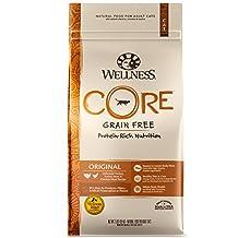 Wellness CORE Natural Grain Free Dry Cat Food, Original Turkey & Chicken, 2-Pound Bag