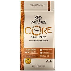 18. WELLNESS CORE Natural Grain Free Dry Cat Food