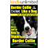 Border Collie Dog Training | Think Like a Dog, But Don't Eat Your Poop! |: Here's EXACTLY How To Train Your Border Collie