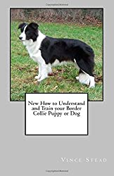 New How to Understand and Train your Border Collie Puppy or Dog