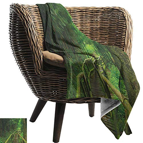 Alexandear Jungle,Warm Microfiber All Season Blanket,Rainforest in Thailand Foliage Greenery Wooden Pathway Trekking Primeval Ancient 60