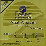 What A Savior [Accompaniment/Performance Track]