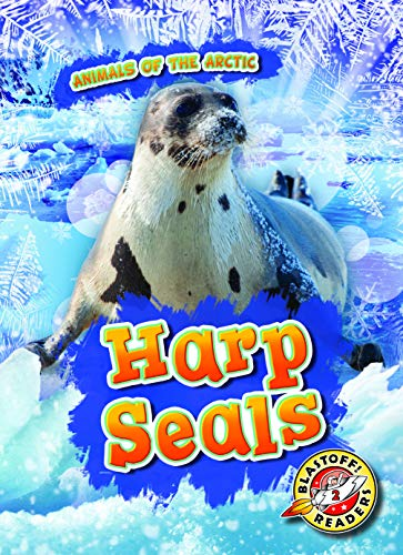 seals the animal - 6