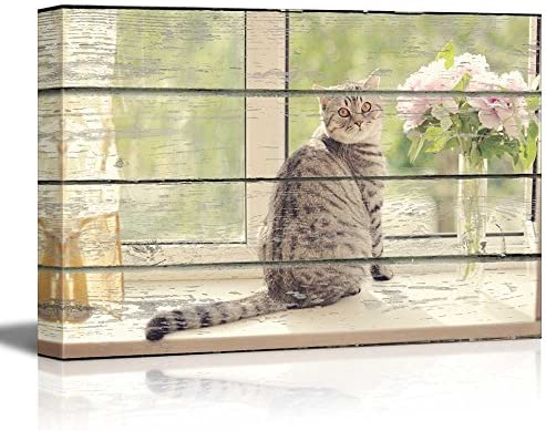 Cat Sitting on The Windowsill on Vintage Wood Textured Background Rustic Country Style