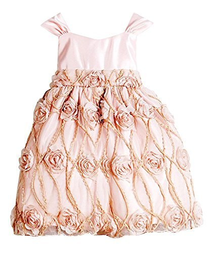 Sweet Kids Baby Girls' Shabby Satin Rose Flower Girl Dress Petal Pink 18M L B476