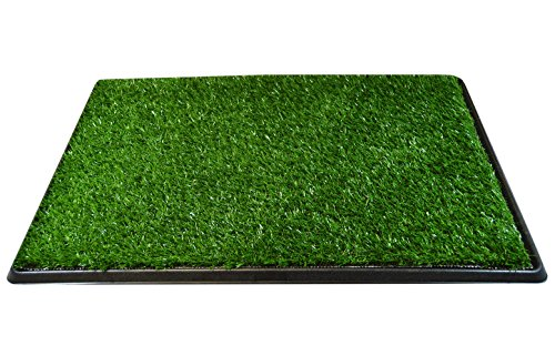 Downtown Pet Supply Dog Pee Potty Pad, Bathroom Tinkle Artificial Grass Turf, Portable Potty Trainer (20 x 30 Inch - 3 Layers) (Best Way To Patch Grass)