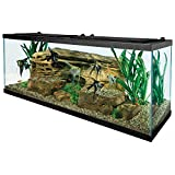 Tetra 55 Gallon Aquarium Kit with Fish Tank, Fish