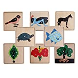 MagiDeal 8 Montessori Animal Plant Shape Puzzles for Kids Early Learning Wooden Educational Toys