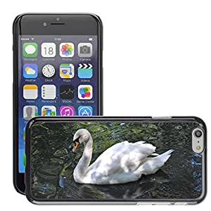 """Super Stella Slim PC Hard Case Cover Skin Armor Shell Protection // M00149873 Swan White Bird Nature Pond Waters // Apple iPhone 6 4.7"""""""