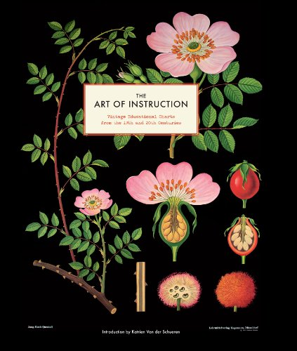 The Art of Instruction: Vintage Educational Charts from the 19th and 20th Centuries