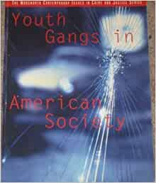 Youth Gangs in American Society (A volume in the Wadsworth ...