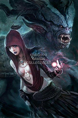 CGC Huge Poster - Dragon Age Origins PS3 XBOX 360 PC - DAI020 (24
